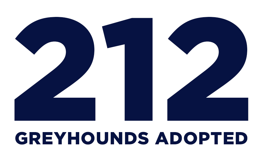 National Greyhound Adoption Day